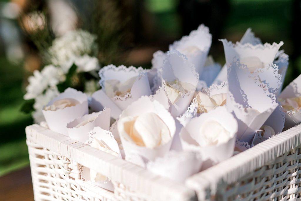 Brisbane rose petal cones