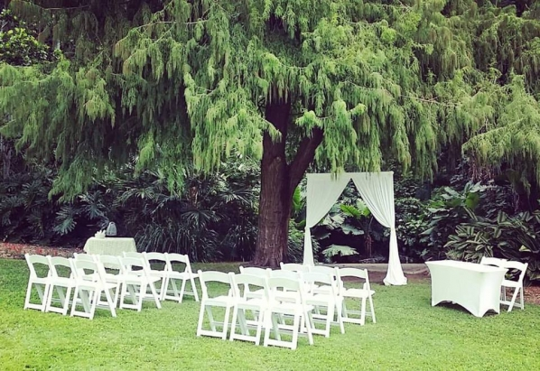 City Botanic wedding arbour