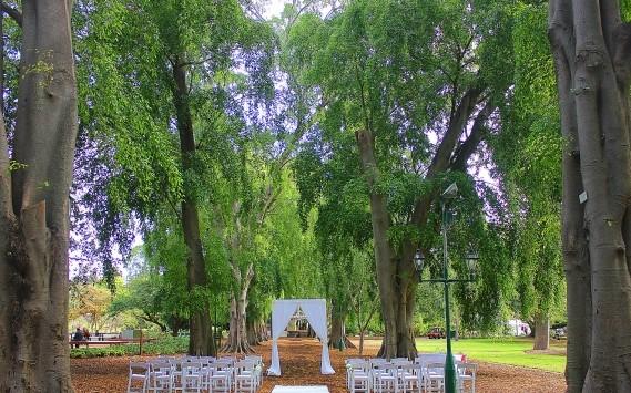 Fig Tree Avenue wedding Brisbane