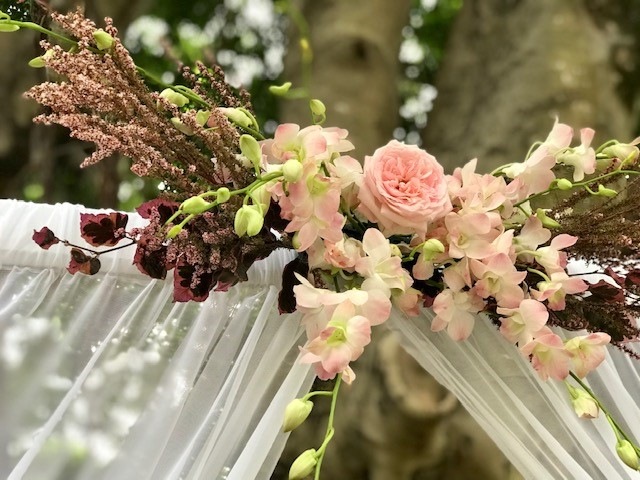Morning Star Lawn Wedding Decor Hire