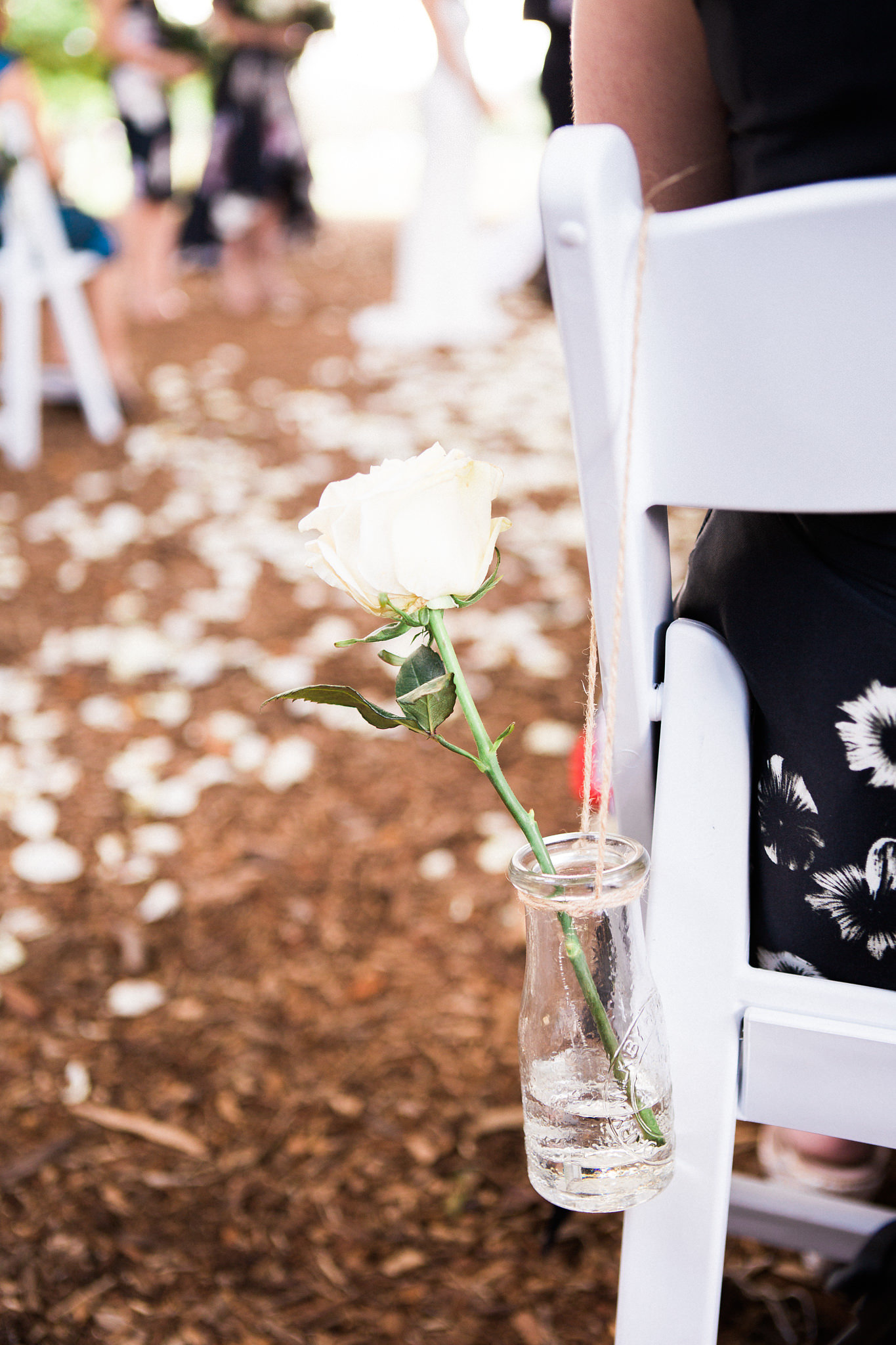 New Farm Park Tree wedding Ceremony