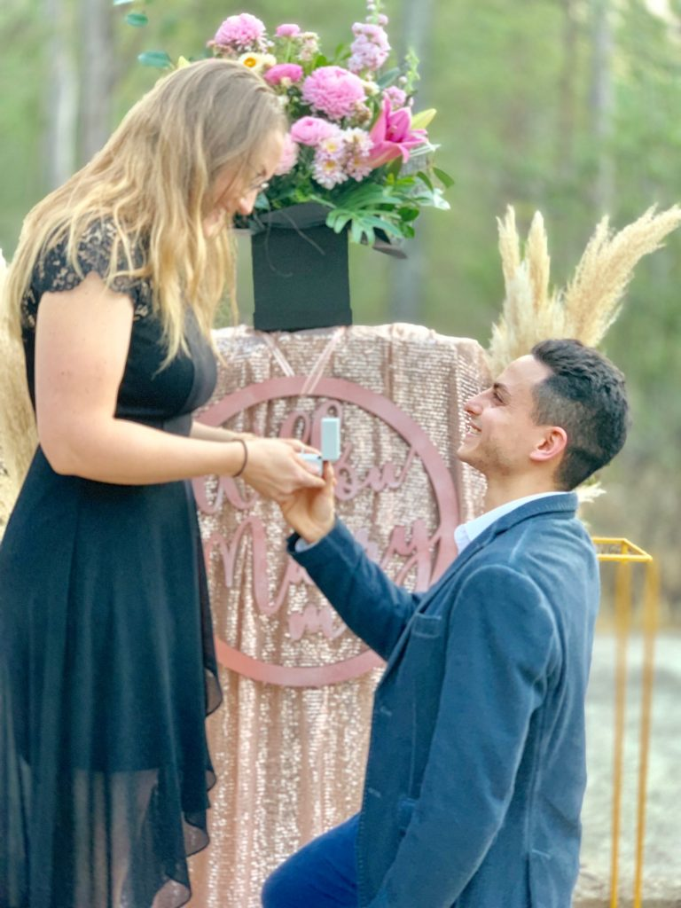 Rain forest proposal