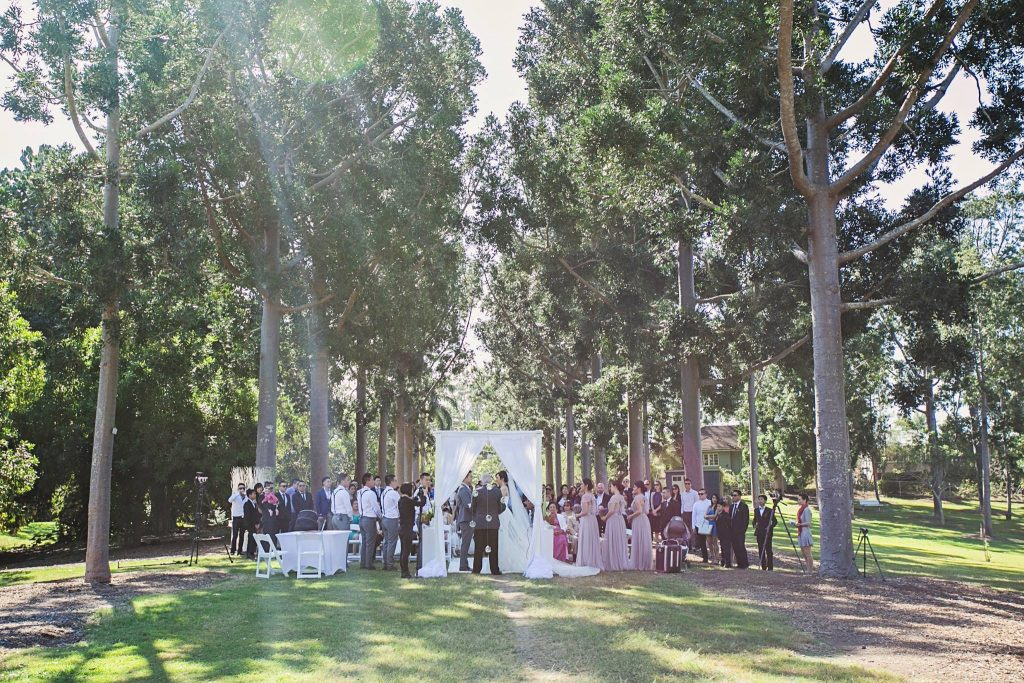 Sherwood Arboretum wedding arbour