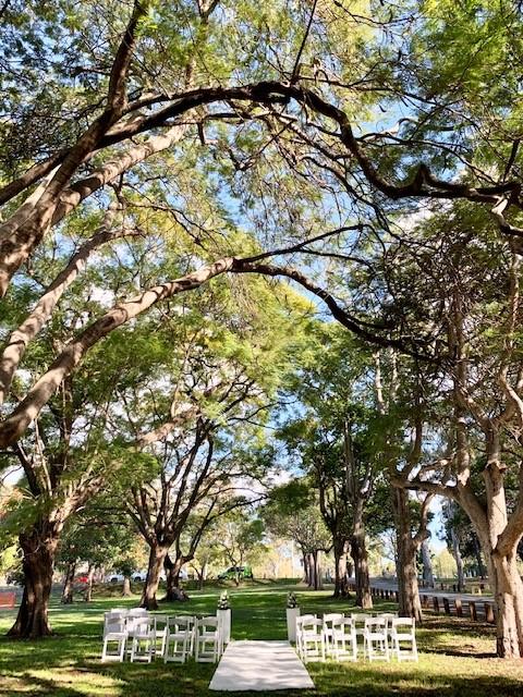 Wedding park decoration Brisbane
