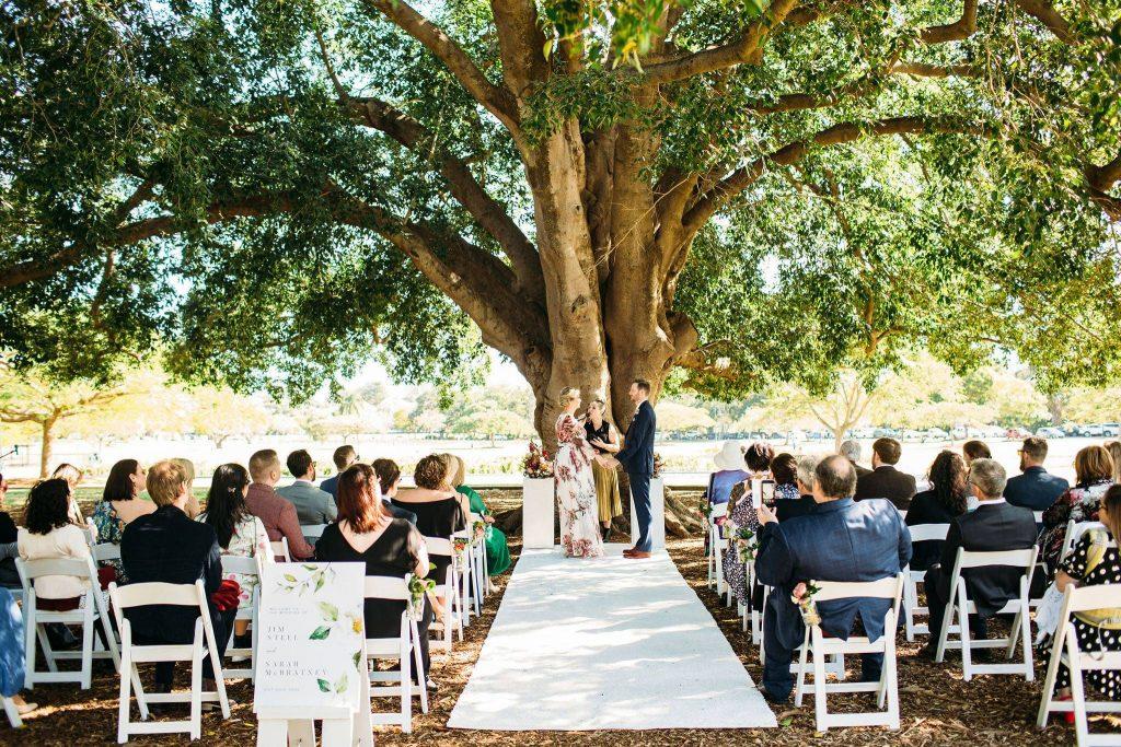 tree wedding Brisbane