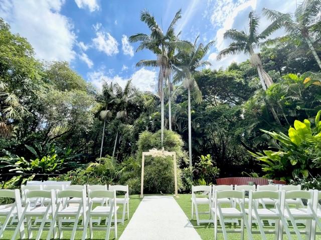 wedding palm tree lawn Mt Coot-tha