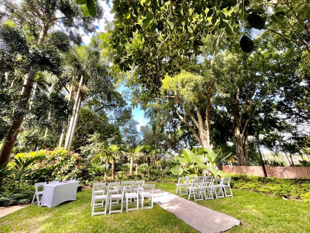 Fig Tree Avenue Brisbane Botanic Gardens