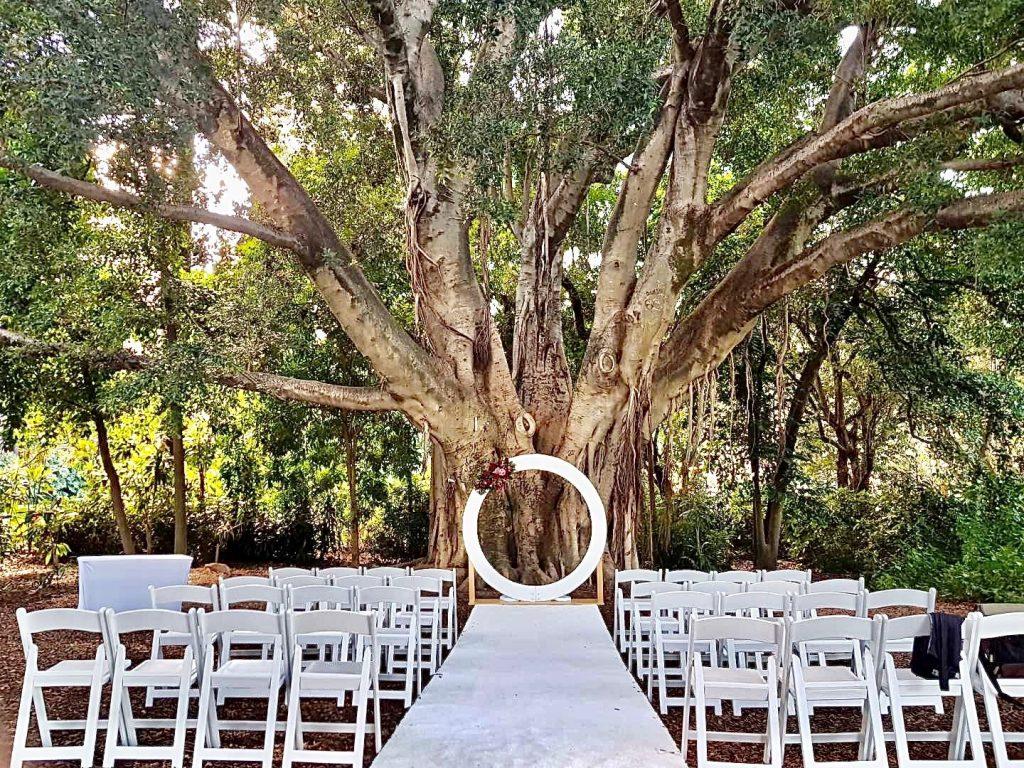 Palm Avenue Lawn Wedding Decor Hire
