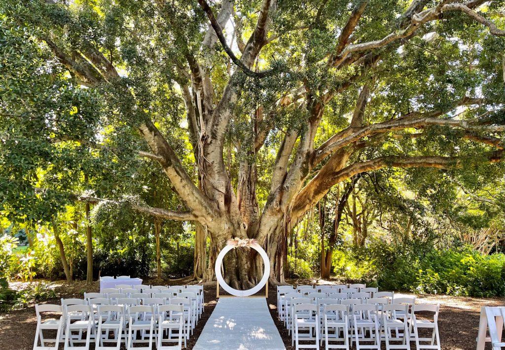 Palm Avenue Lawn wedding City Botanic
