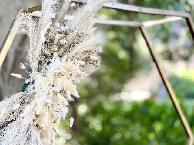 Brisbane Botanic garden wedding